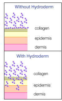 How Hydroderm helps collagen move into the skin to help revitalize it and reduce the signs of aging